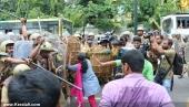 abvp secretariat march at thiruvananthapuram photos 100 008