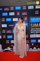 shriya saran at siima award 2017 photos 071
