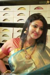 actress sneha in kancheepuram vrk silks inauguration photos 011 030