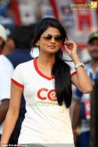 1945celebrity cricket league 2013 pictures 03 0