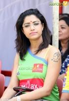 459celebrity cricket league 2013 pictures 03 0