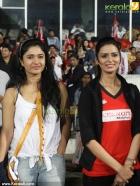 7939celebrity cricket league 2013 pictures