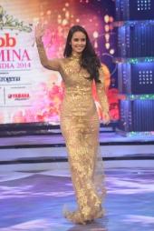 megan young at fbb femina miss india 2014 photos 009