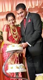 7882gopika wedding reception pictures 06 0