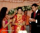 7949gopika wedding reception photos
