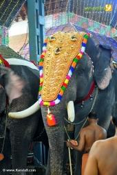 guruvayur temple festival 2016 photos 093 011