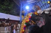 guruvayur temple arattu 2017 photos 272