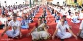 international yoga day 2018 celebration kerala photos 7
