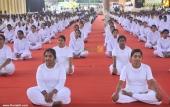 international yoga day state inauguration 2016 photos 200 006