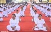 international yoga day state inauguration 2016 photos 200 007