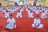 international yoga day state inauguration 2016 photos 200 008
