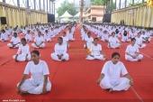 international yoga day state inauguration 2016 photos 200 009