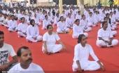 international yoga day state inauguration 2016 photos 200 010