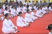 international yoga day state inauguration 2016 photos 200 01
