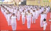 international yoga day state inauguration 2016 pics 300 010