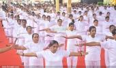 international yoga day state inauguration 2016 pics 300 012
