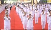 international yoga day state inauguration 2016 pics 300 013