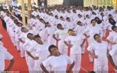 international yoga day state inauguration 2016 pics 300