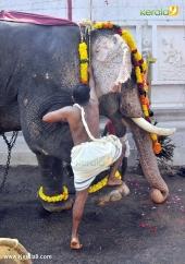 karakulam devi temple ponkala 2016 photos  063
