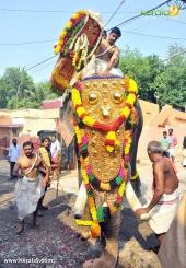 karakulam devi temple ponkala 2016 photos  065