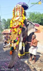 karakulam devi temple ponkala 2016 photos  067