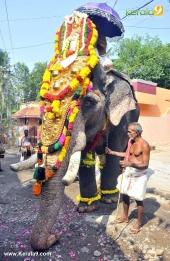 karakulam devi temple ponkala 2016 photos  068