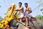 karakulam devi temple ponkala 2016 photos  070