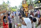 karakulam devi temple ponkala 2016 photos  07