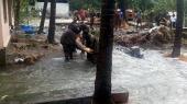 kerala flood latest photos 0934 1