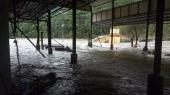kerala floods 2018 sabarimala pampa photos 1