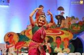 kerala onam celebration 2017 photos  071