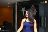 masterpiece malayalam movie audio launch photos 029