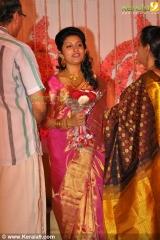 meera jasmine reception photos 001