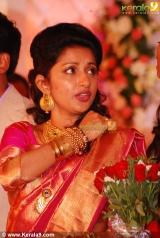 meera jasmine wedding reception photos 11