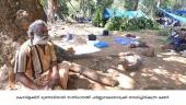 sabarimala makara jyothi 2016 photos 092 003