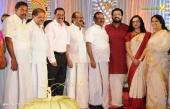 sabarinath mla divya iyer marriage photos  090