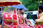 serial actress meghna vinsent and dimple rose pre wedding reception photos  003