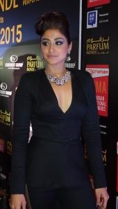 south celebrities at siima awards 2015 photos 055