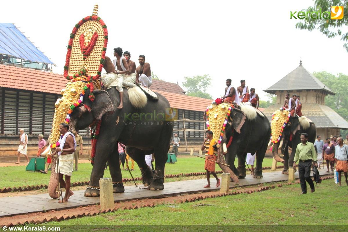 Thrissur India  city images : Thrissur pooram 2014 images 00279 Kerala9.com