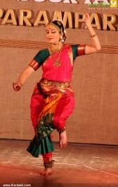 vidya subrahmaniam at soorya music festival pics 234