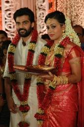 vijayaraghavan son wedding photos 090