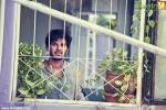 12805 sundarikal malayalam movie stills 00 0