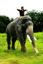 aana alaralodalaral malayalam vineeth sreenivasan photos 121