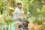 akasha mittayi malayalam movie jayaram photos 109 004