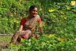 black forest malayalam movie photos  001