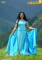 dafedar malayalam movie malavika nair photos 110 004