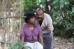 kaattu malayalam movie photos 11