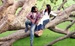kavan tamil movie stills 123 002