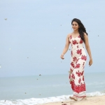 khakee tamil movie rakul preet singh photos 129