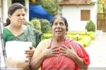koppaiyile kodumkattu malayalam movie stills 100 020